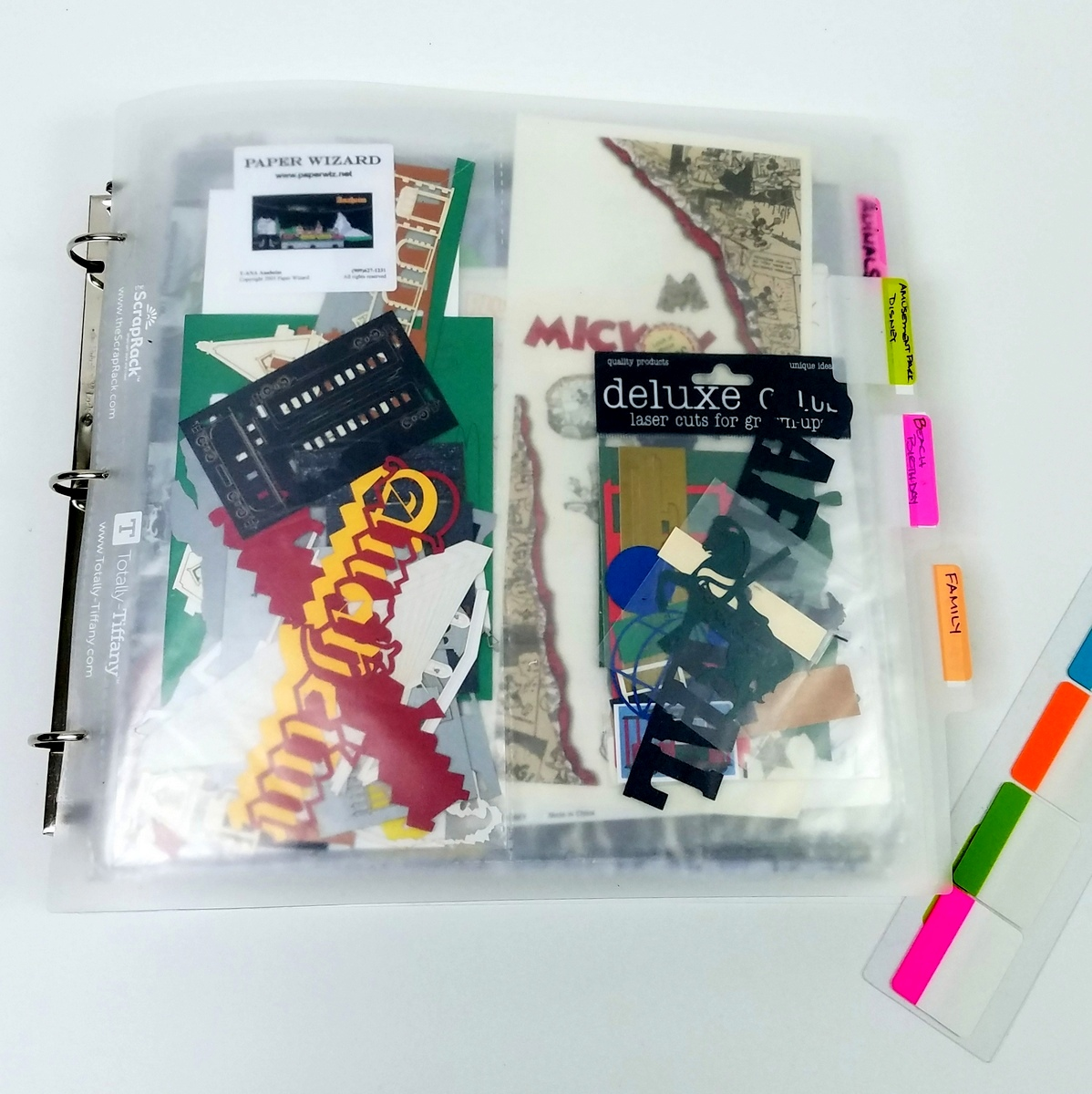 Labelyour ScrapRack Divider with SYF tabs from Totally-Tiffany